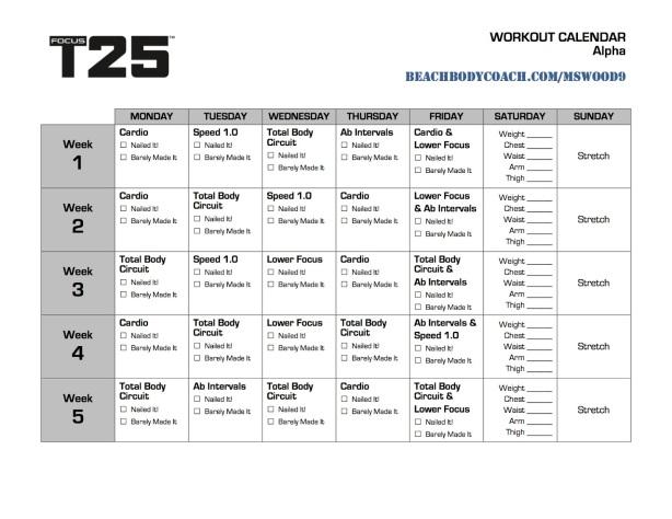FOCUS T25 alfa - Kalendarz