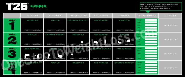 FOCUS T25 gamma - Kalendarz